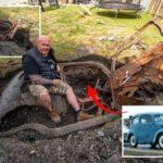 Британец обнаружил таинственный автомобиль 1950-х годов, похороненный под газоном в саду