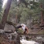 Йога в лесу