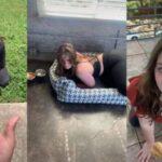 Девушка ведет себя как собачка и получает от подписчиков деньги