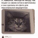 Лучшие юмористические комментарии из социальных сетей