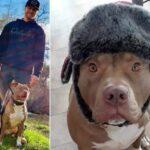 В Калифорнии мужчина отбил у медведя свою собаку