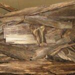 Кинам – самая редкая и дорогая древесина в мире