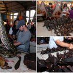 Шокирующие фотографии показывают, что пресловутый индонезийский влажный рынок все еще открыт